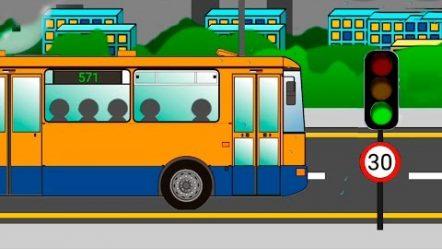Видео для детей про Автобусы. Мультики про машинки и автобусы.