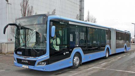 Обзор автобуса MAN Lion's City MY2018