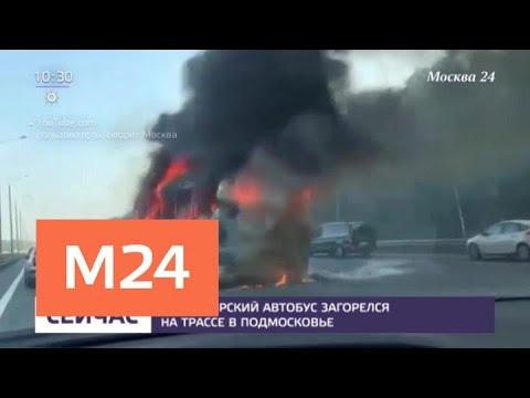 В Подмосковье на трассе загорелся пассажирский автобус — Москва 24