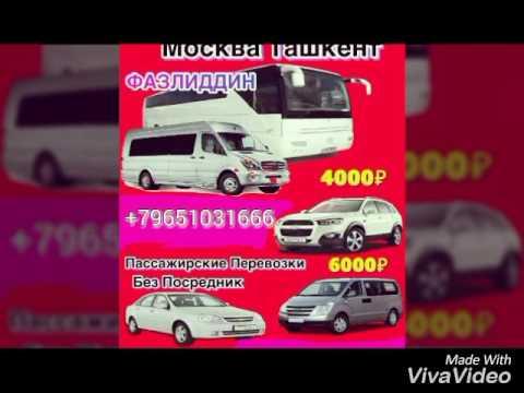 Санкт Петербург Ташкент хамда Москва Ташкент йоналиши бойича автобус микроавтобус хизматлари