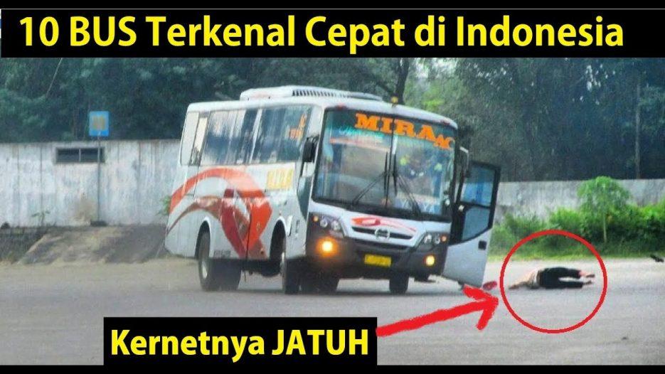 10 BUS Terkenal Cepat di Indonesia