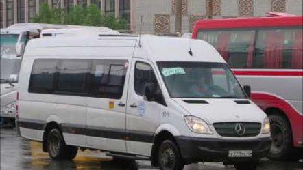 Автобусы НАО «ПАТП-1» г. Курган