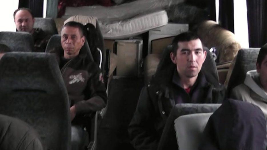 Мигранты на диване попались ГИБДД