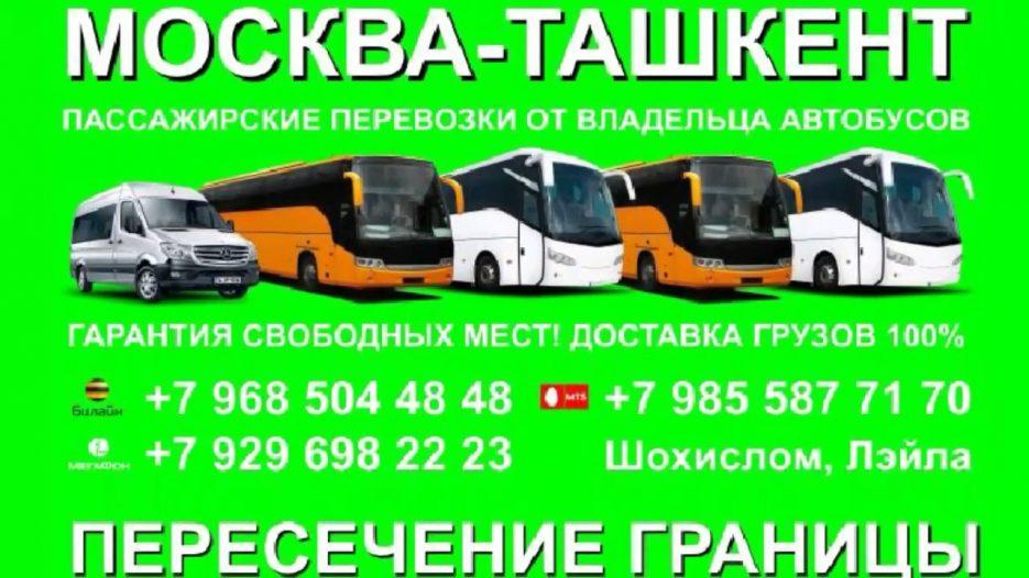 Автобусы. Москва-Ташкент