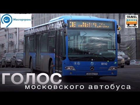 «Голос московского автобуса»   «Voice of Moscow bus»