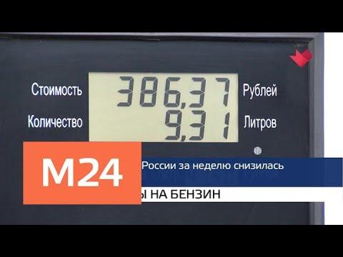 «Москва и мир»: автобусы без турникетов и «дизельный скандал» — Москва 24