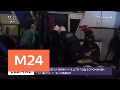 Два автобуса попали в ДТП под Воронежем — Москва 24