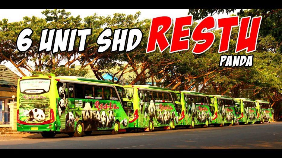 2 KESALAHAN FATAL!!! -_- | PANDA NEMPEL DI BUS | Rombongan 6 Unit SHD Jetbus 3 Bus Restu Panda